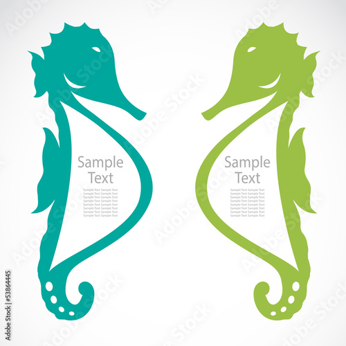 The design of the seahorse on white background