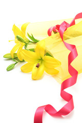 Yellow lily bouquet and ribbon on white background