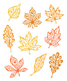 Set of autumn ornamental leaves