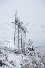 The power pole
