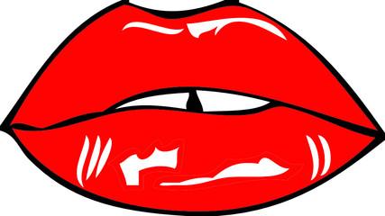 Bocca e labbra
