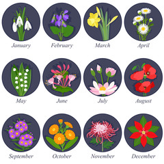 Flowers months of the year on dark background
