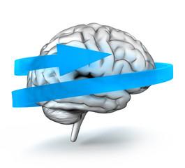 Brain-Update