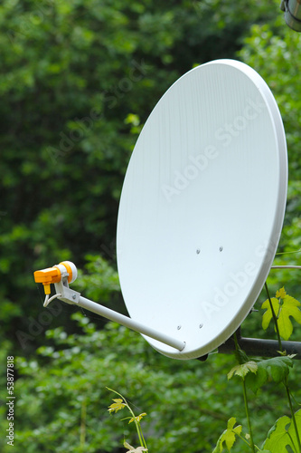 parabolic antenna on a background of forest