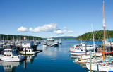 The marina at Friday Harbor on San Juan Island. - 53879809
