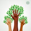 Diversity hands green concept tree