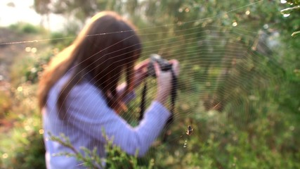 Spiderweb & the Girl with a photocamera at background.