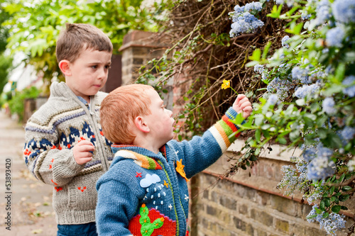 Two little boys picking flowers