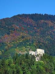 Likava Castle ruin hidden in deep forest