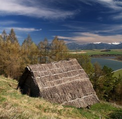 Ancient wooden Celtic house