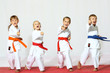canvas print picture - Four children in kimono hit a punch on a white background
