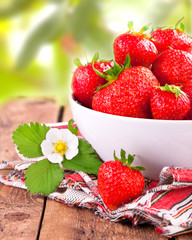 frisch gepflückte Erdbeeren im Garten