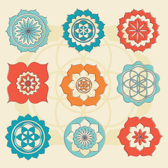 sacred geometry flower of life symbols