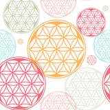 sacred geometry flower of life seed pattern - 53907420