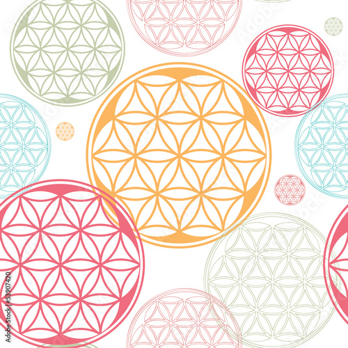 sacred geometry flower of life seed pattern
