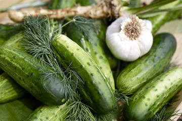 Cucumbers and herbs, close-up