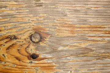 Foglio di legno
