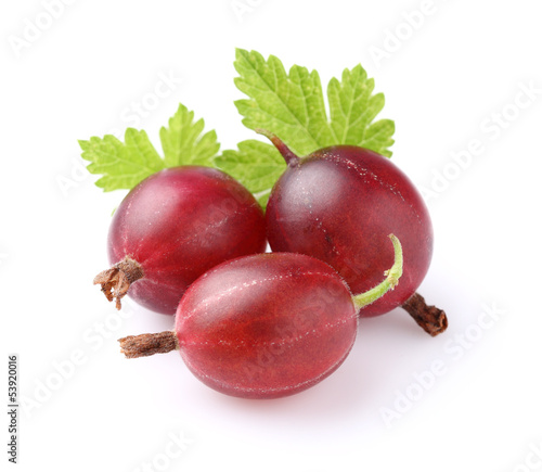 Red gooseberry with leaves