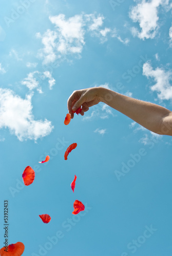 Petals heart