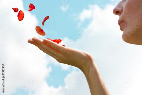 Blowing petals