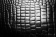 Black leather snake texture