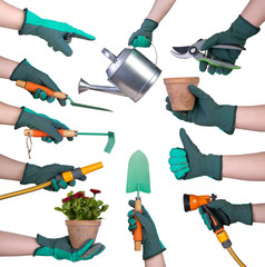 Hand in a glove holding gardening tools