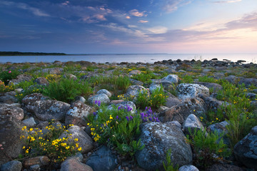 Rocky shores at the see