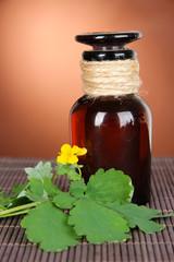 Blooming Celandine with medicine bottles