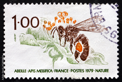 Postage stamp France 1979 Honey Bee, Apis Mellifica