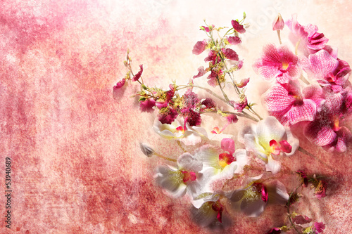 Branch of white and pink orchids in grunge style
