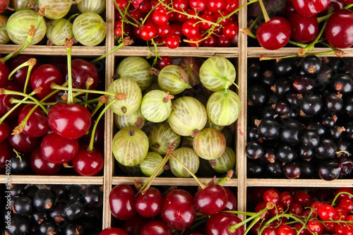 Different summer berries in wooden crate, close up