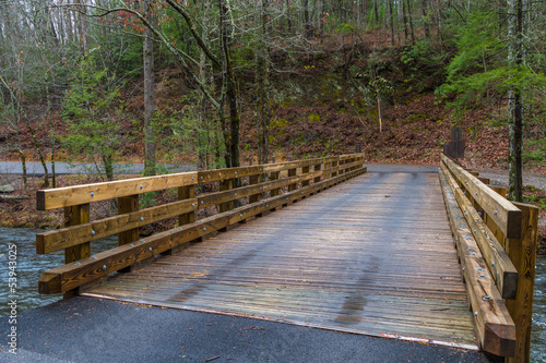 Wooden bridge in Smoky Mountain