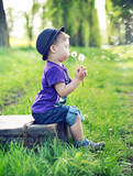 Small gentleman blowing the dandelions