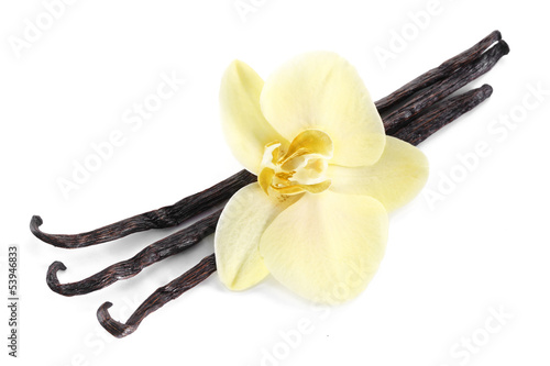 Fotobehang Aromatische Vanilla sticks with a flower.