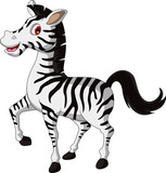 cute zebra cartoon walking