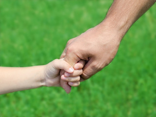 Child holds the hand of the father