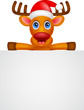 deer cartoon Christmas with blank sign