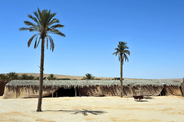 Nomads desert camp