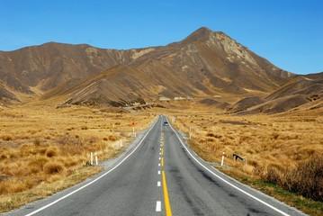 ニュージーランド 秋のリンディス・パス