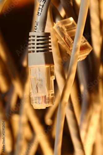 Insulated cords of network link