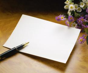 stilo e foglio bianco