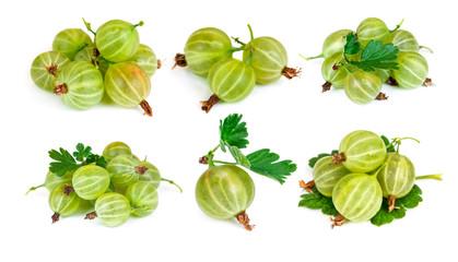 Set of gooseberry