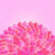 Big Pink Half Flower in the Bottom