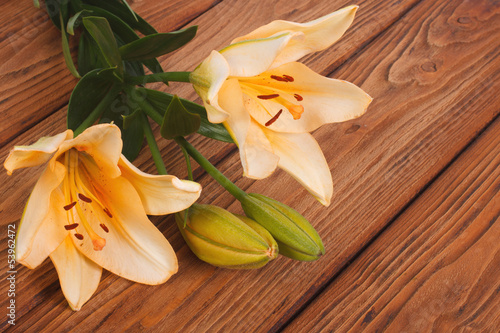 yellow lily flower with a bud on the  wooden table