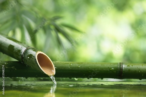 Natural  bamboo fountain © lily