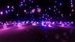 purple color tone light balls