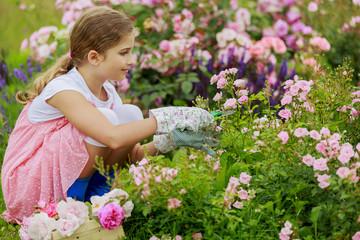 Rose garden - beautiful girl cutting roses in the garden