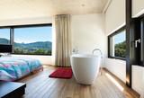 Modern villa, interior, bedroom with bathtub