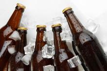 Botellas de cerveza en cubos de hielo de cerca