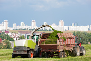 Silage Season - Harvester cuts a field and loading Trailer
